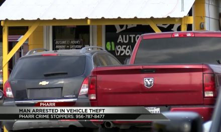 One Arrested in Multiple Vehicle Theft Incident