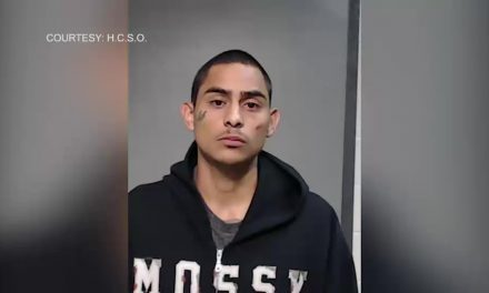 Brownsville Trial Begins for Gang-Related Murder