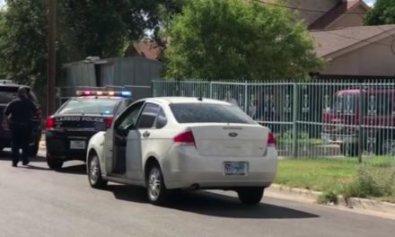 Mailman stabbed multiple times in Laredo
