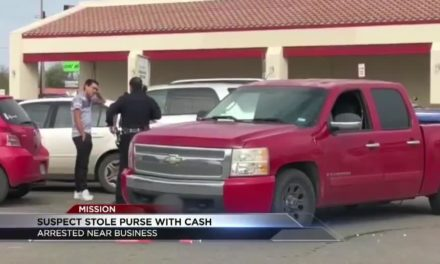Man Caught After Stealing $800 From Woman's Purse
