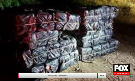 Federal Agents Seize Nearly $700,000 Worth Of Narcotics