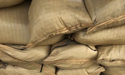 City of Brownsville Sandbag Distribution