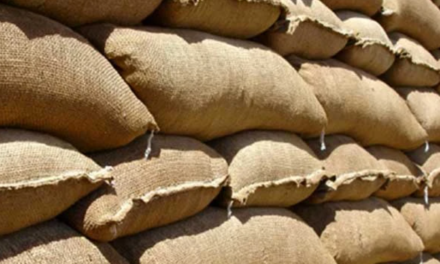 Sand Bag Distribution In The Rio Grande Valley